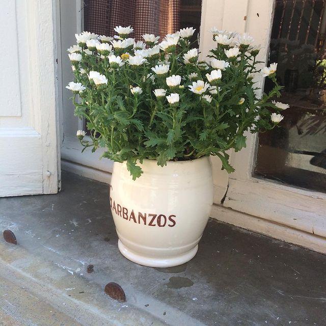 Rustik Balkon çiçekleri