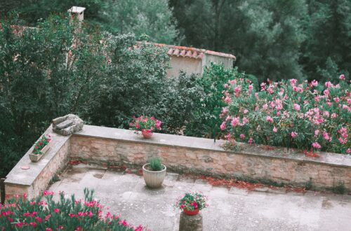 Balkon Çiçekleri Ne Zaman Ekilir?
