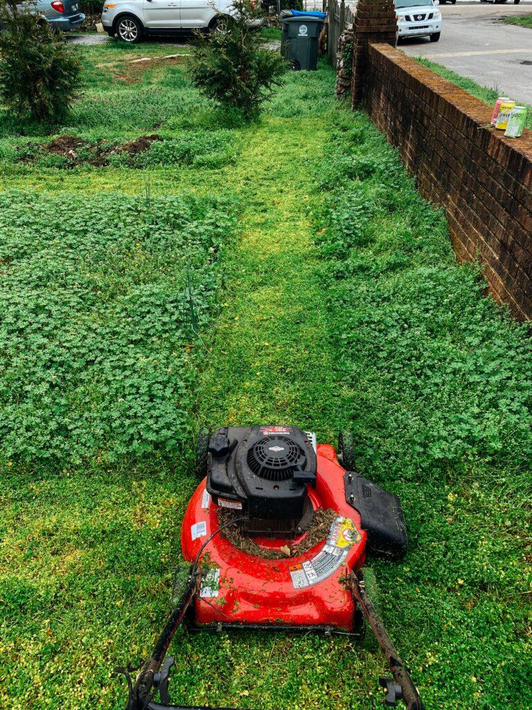 En iyi çim biçme trendyol