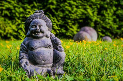 Feng Shui'ye Göre Bahçe Düzenlemesi Nasıl Yapılır?