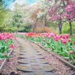 Organik Bahçe Bakım ve Koruması