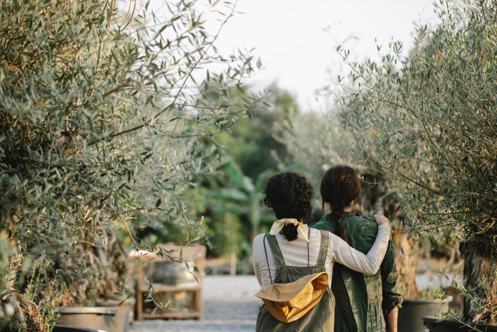 bahçe için imar izni nasıl alınır
