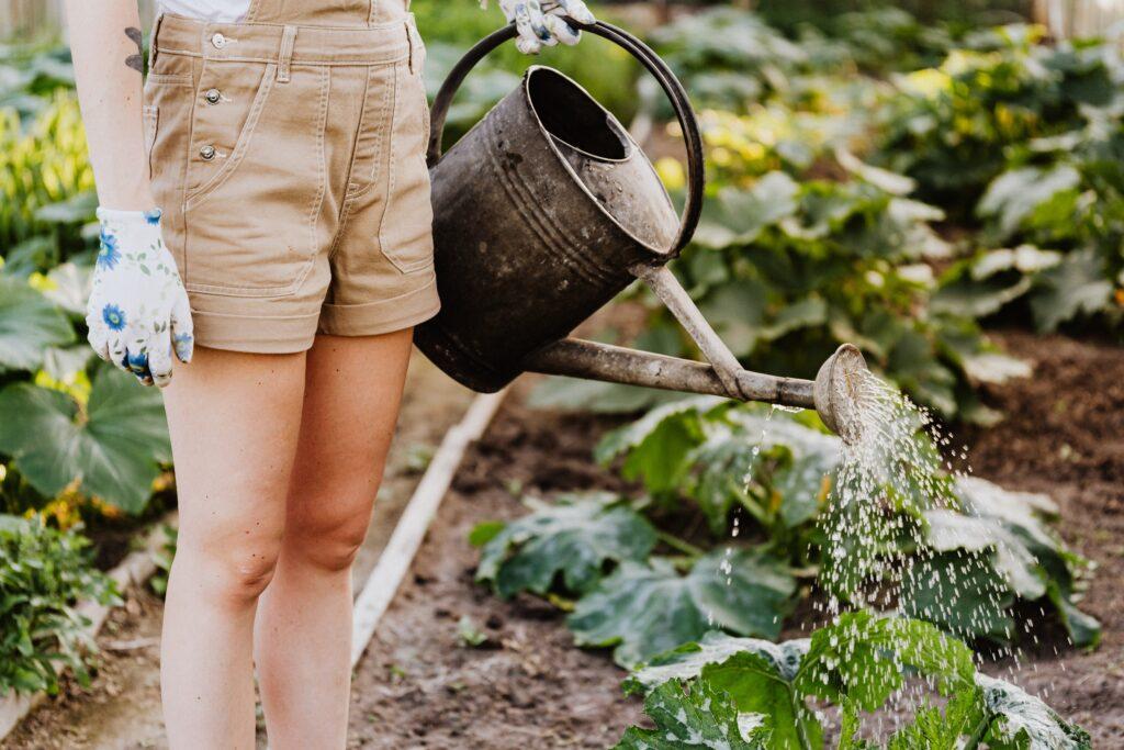 bahçe nasıl sulanır