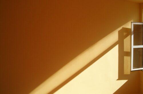 5 NEDEN: Duvar Boyası Neden Küflenir?