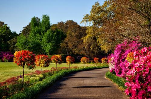 Yaz ve Bahar Aylarında Bahçe Bakımı