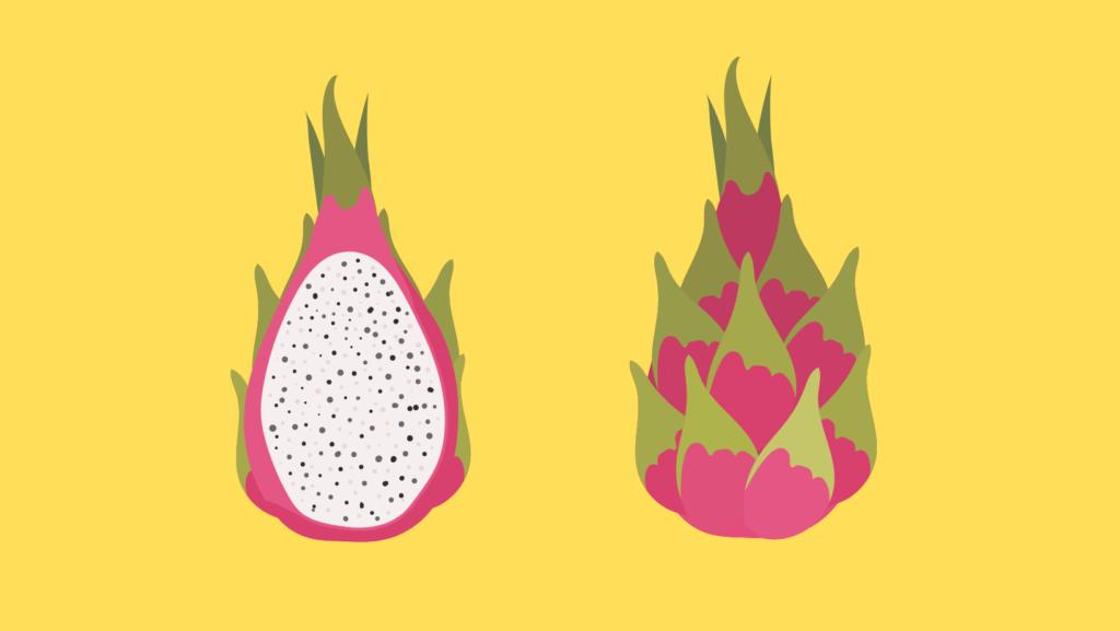 Ejder Meyvesi Nasıl Yetiştirilir? Faydaları Nelerdir?