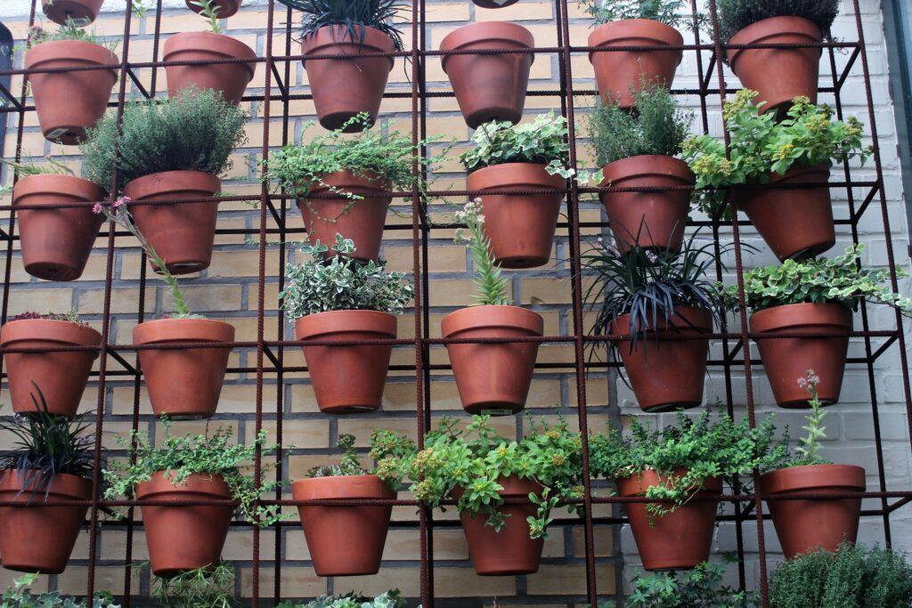 Çiçek ve bitkileri duvar dekorasyonu